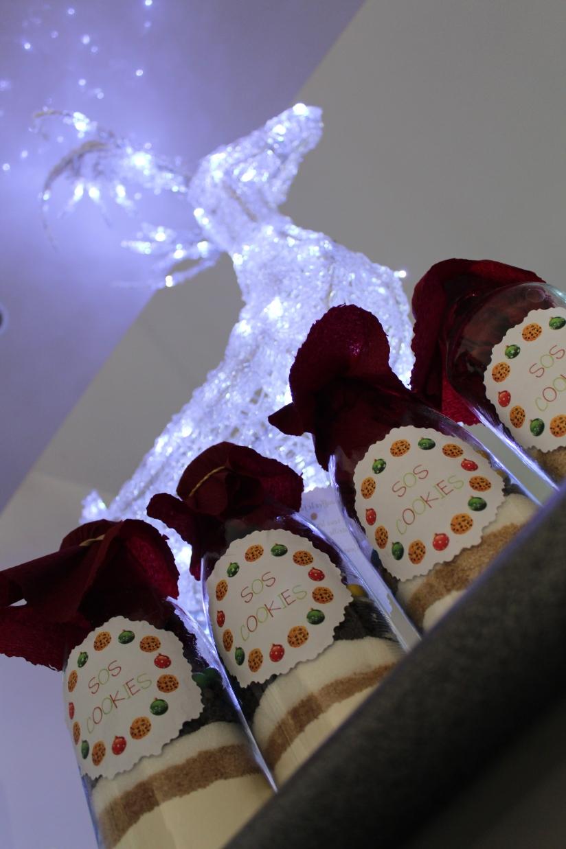 kit-cookies-sos-m&ms-couleur-cadeau-recette-pteapotes-distribution-lot
