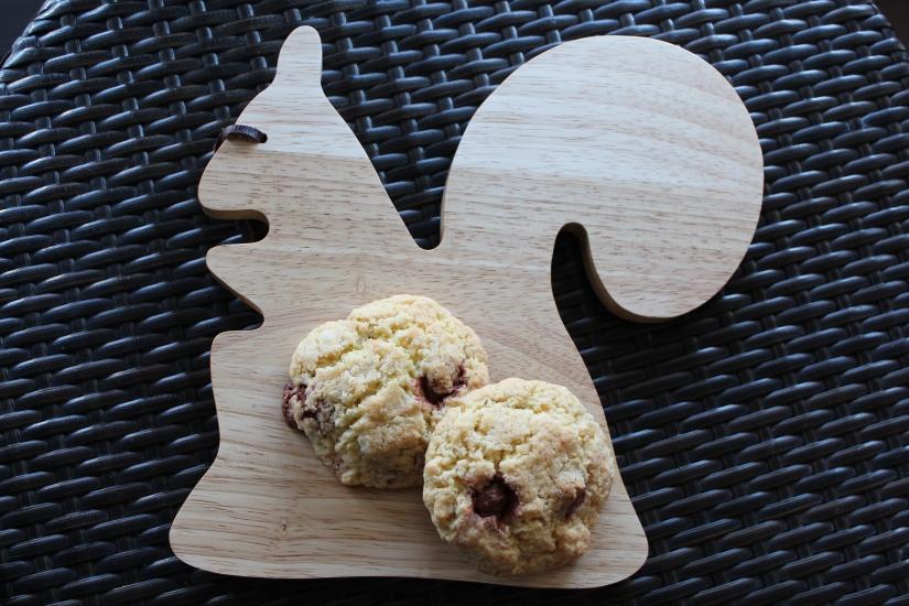 kit-cookies-sos-m&ms-couleur-cadeau-recette-pteapotes-ecureuil-monoprix