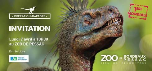 pessac-2014raptor