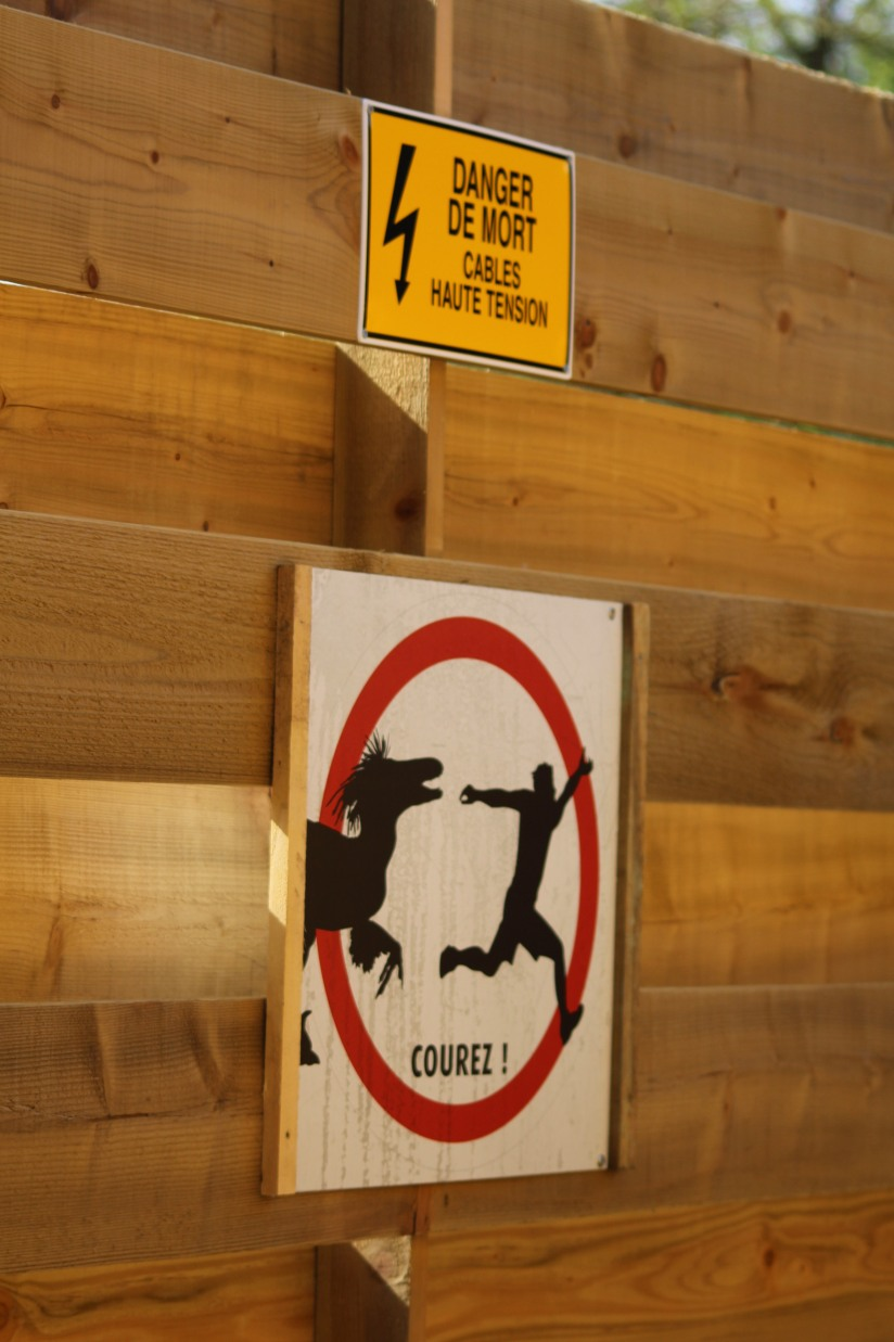 zoo-pessac-bordeaux-enfant-sortie-parc-animalier-dinosaure-opération-raptors-squelette-panneau-signalétique-danger