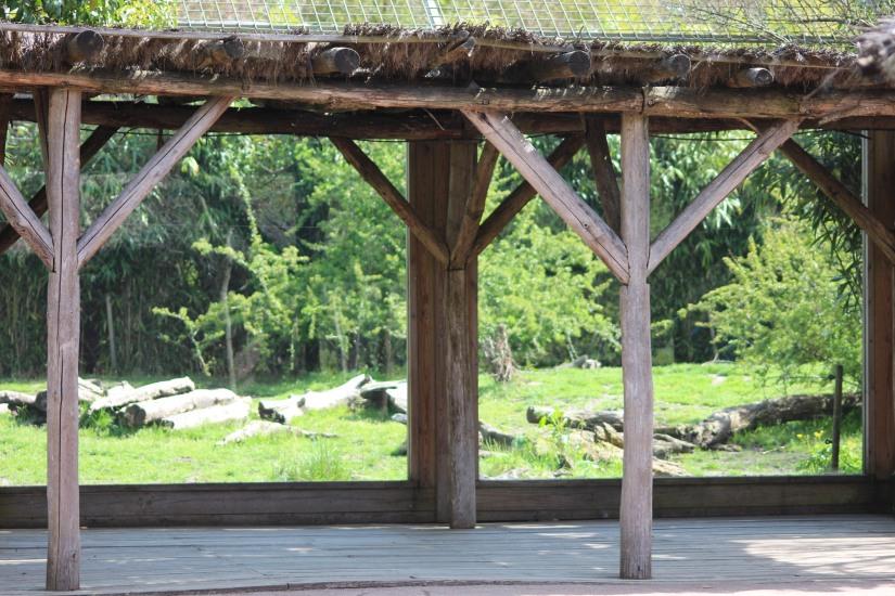zoo-pessac-bordeaux-enfant-sortie-parc-animalier-dinosaure-opération-raptors-squelette-vitre-observatoire