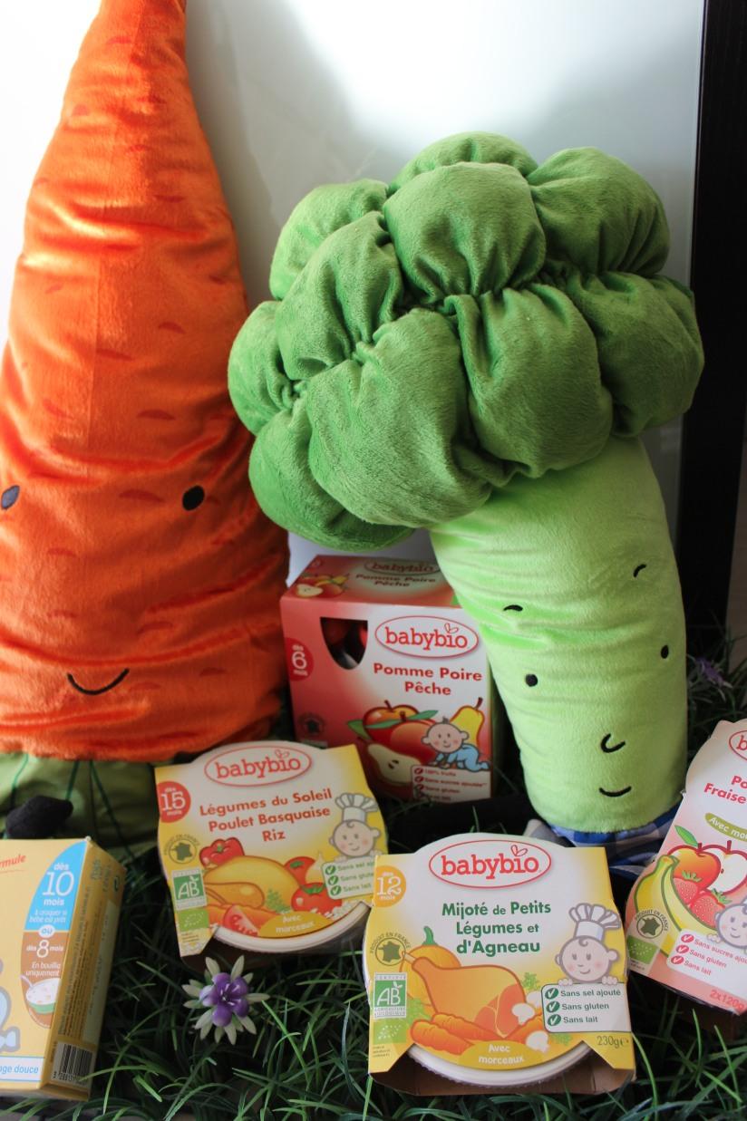 babybio-cestas-bordeaux-alimentation-bebe-bio-compote-plat-biscuit