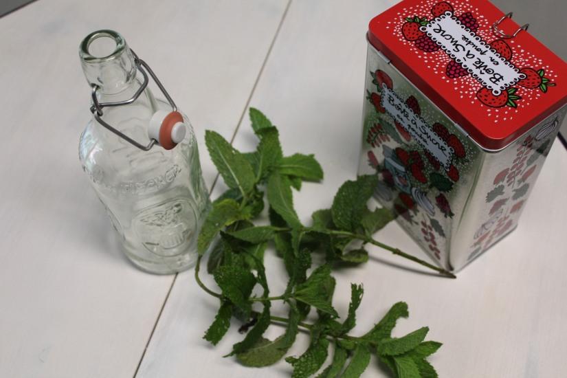 sirop-menthe-maison-bio-naturel-sucre-plante-bouteille-diy-cadeau-papa