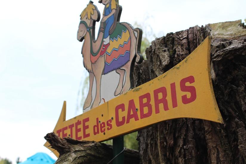 ferme-exotique-cadaujac-zoo-animaux-pedagogique-jeux-manege-petit-train-biberon-tetee-chevre-chameau-bordeaux-enfant-sortie-cabris