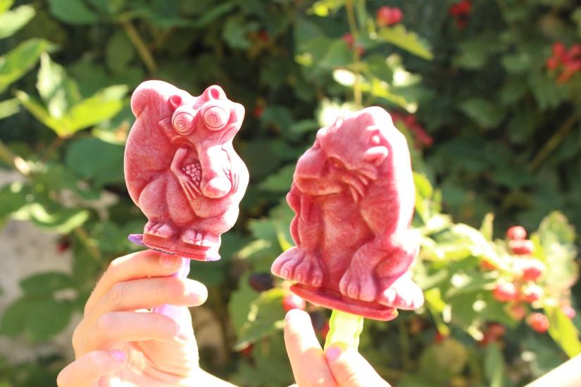 glace-mure-framboise-fruit-rouges-sorbet-naturel-bio-tupperware-moule-fait-maison-home-made-diy-enfant-été-vacances-age-de-glace