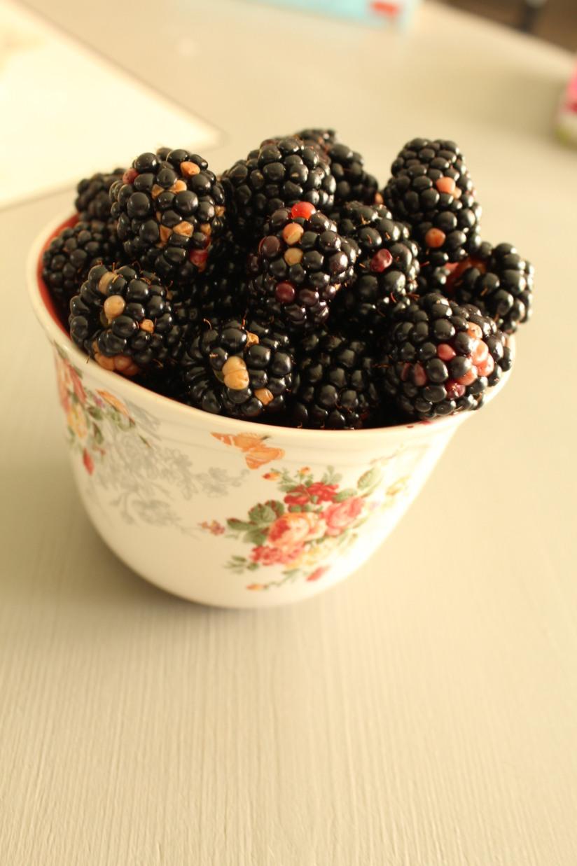 glace-mure-framboise-fruit-rouges-sorbet-naturel-bio-tupperware-moule-fait-maison-home-made-diy-enfant-été-vacances