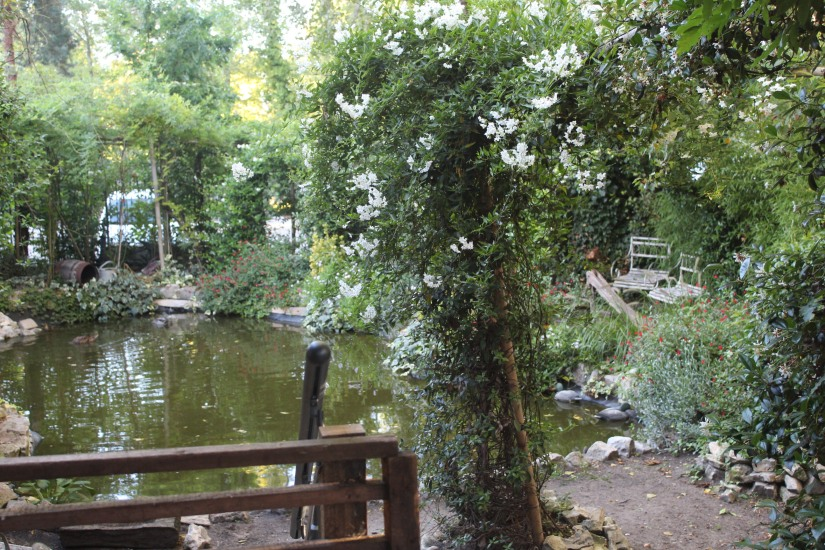 restaurant-la-ferme-bruges-bordeaux-enfant-decor-animaux-coq-canard-campagne-ville-vue