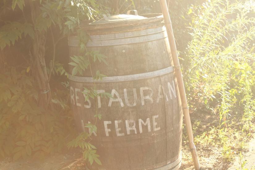 restaurant-la-ferme-bruges-bordeaux-enfant-decor-animaux-coq-canard-campagne-ville