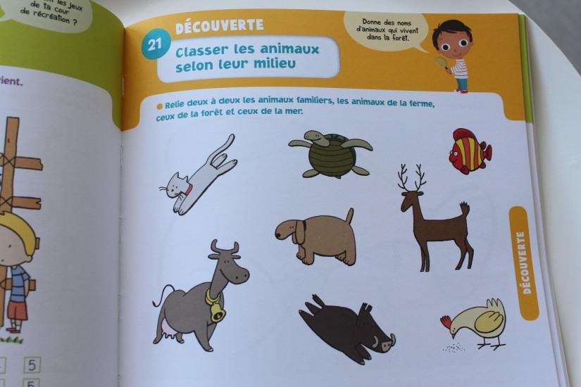 bordas-livre-cahier-eveil-vacances-maternelle-autocollants-petit-enfant-animaux-lecture-nombre-lettre-chiffre-maths-anglais-decouverte-programme-ecole-ferme