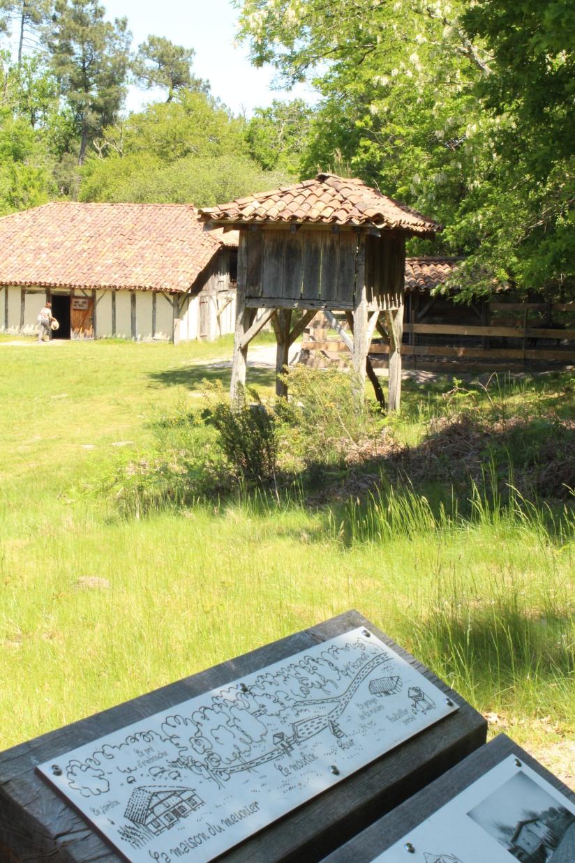 ecomusee-village-marqueze-landes-maison-metier-artisan-train-enfant-famille-decouverte-visite-pteapotes-blog-8
