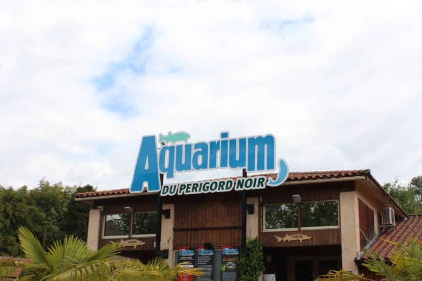dordogne-perigord-alligator-park-aquarium-village-bournat-cabane-arbres-perchees-tertre-bugue-sarlat-gironde-aquitaine-crocodile-antan-autrefois-1900-siècle-10