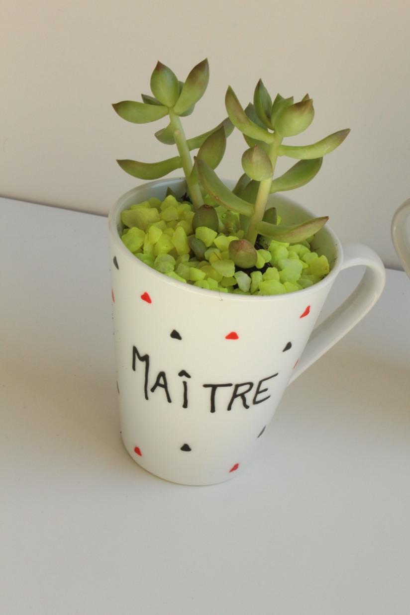 truffaut-flower-party-plante-grasse-succulente-cactus-diy-tuto-brico-enfant-maitre-maitresse-atsem-papa-maman-pot-mug-deco-peinture-porcelaine-facile-2
