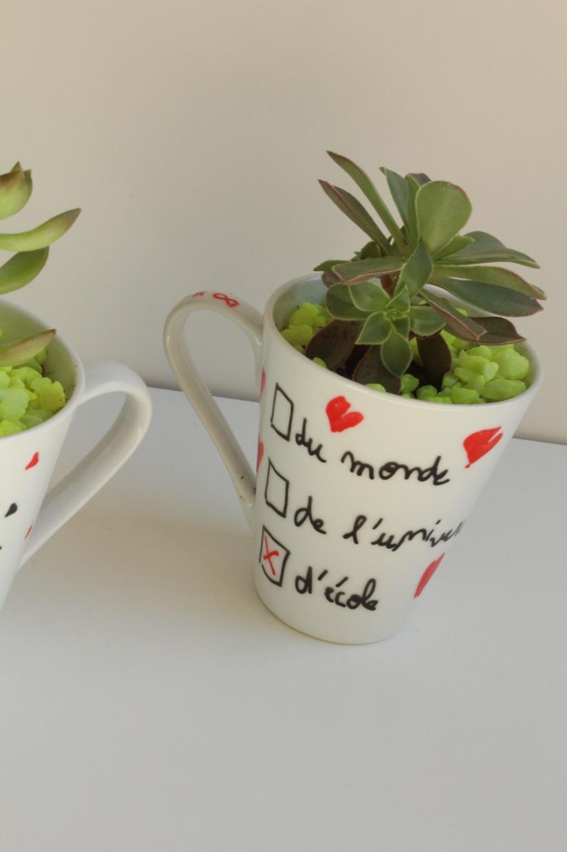 truffaut-flower-party-plante-grasse-succulente-cactus-diy-tuto-brico-enfant-maitre-maitresse-atsem-papa-maman-pot-mug-deco-peinture-porcelaine-facile-3