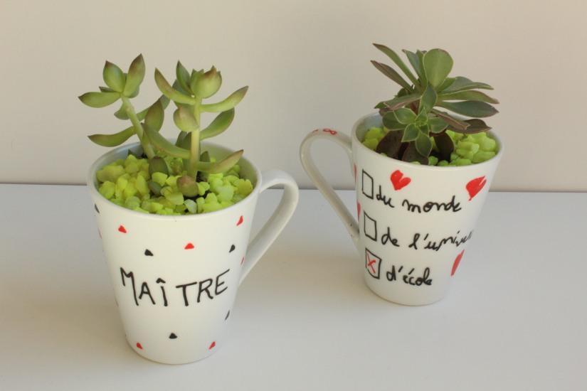 truffaut-flower-party-plante-grasse-succulente-cactus-diy-tuto-brico-enfant-maitre-maitresse-atsem-papa-maman-pot-mug-deco-peinture-porcelaine-facile-4
