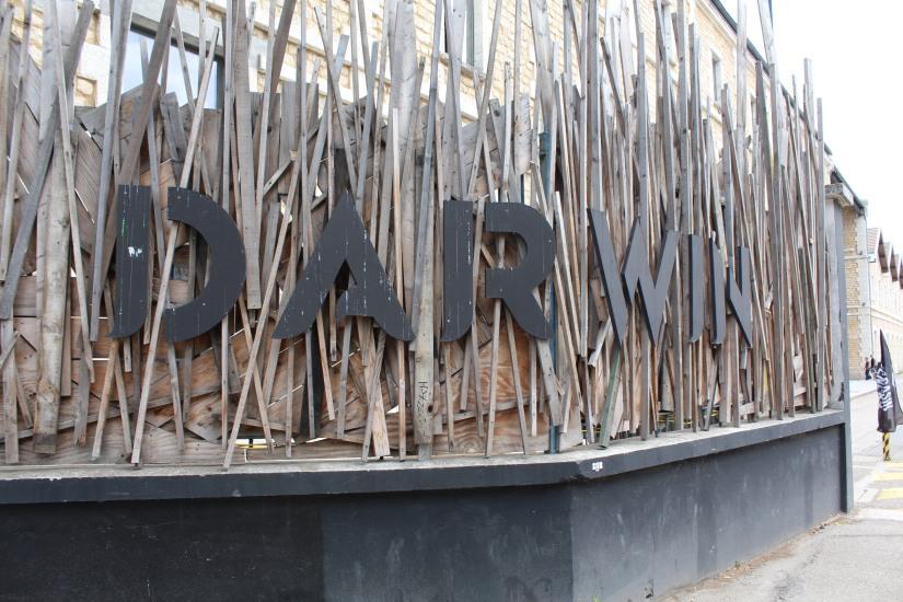 darwin-magain-general-rstaurant-lieu-rive-droite-bordeaux-hangar-decouverte-brunch-artiste-street-art-skate-jeux-ecolo-eco-bobo-recyclage-zero-dechet-epicerie-bio