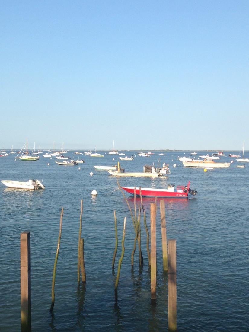 eric-larrarte-cap-ferret-arcachon-bassion-huitres-crevettes-degustation-bateau-ponton-ocean-gironde-aquitaine-atlantique-decouverte-balade-cabane