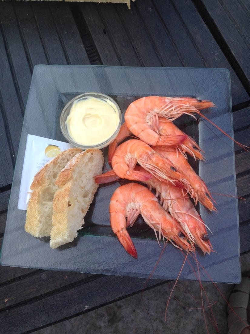 eric-larrarte-cap-ferret-arcachon-bassion-huitres-crevettes-degustation-bateau-ponton-ocean-gironde-aquitaine-atlantique-decouverte-balade-fruits-mer
