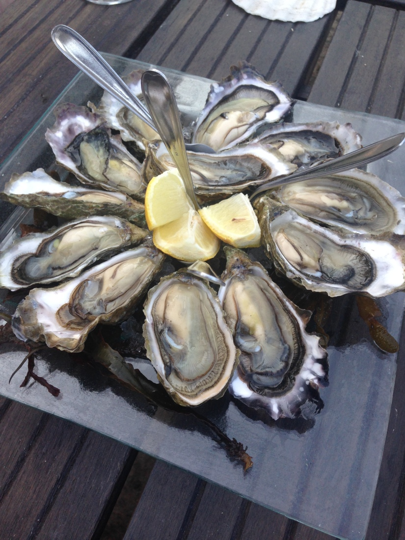 eric-larrarte-cap-ferret-arcachon-bassion-huitres-crevettes-degustation-bateau-ponton-ocean-gironde-aquitaine-atlantique-decouverte-balade-grasse
