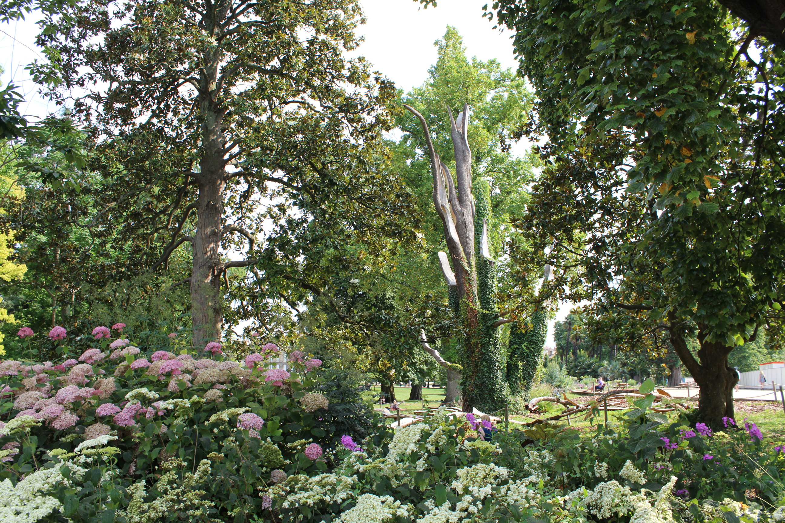 Location Appartement Bordeaux Jardin Public