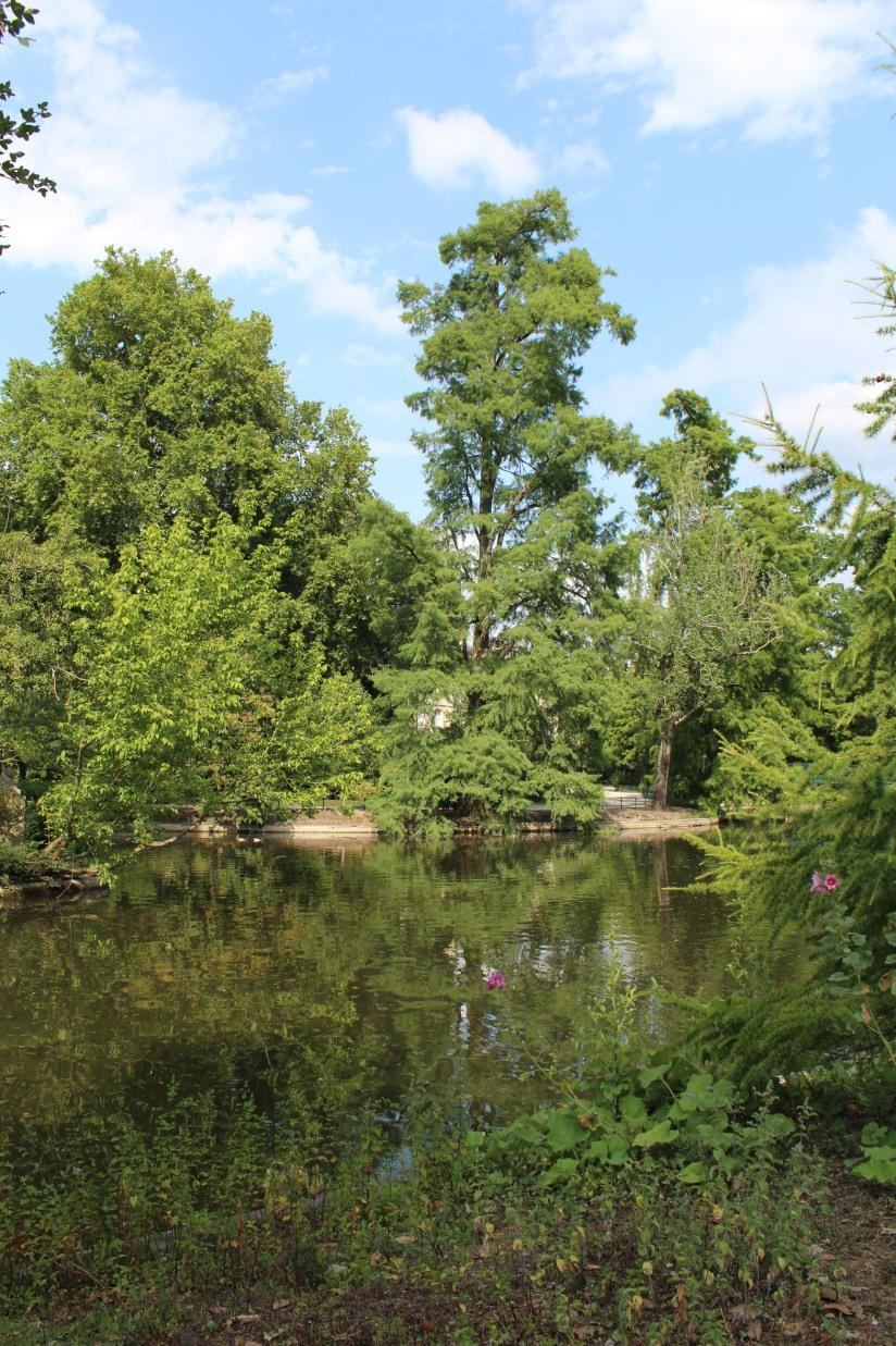 jardin-public-bordeaux-centre-ville-gironde-aquitaine-pont-manege-enfant-jeux-eau-calme-promenade-balade-6