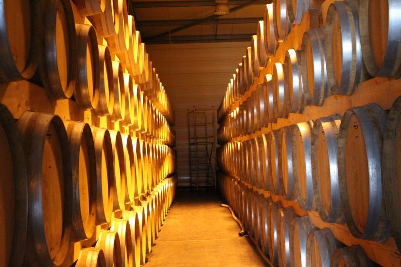 vignerons-tutiac-vin-cotes-blaye-rouge-rose-blanc-vigne-verre-degustation-oenotourisme-oenologie-decouverte-visite-chai-cuves-1-11