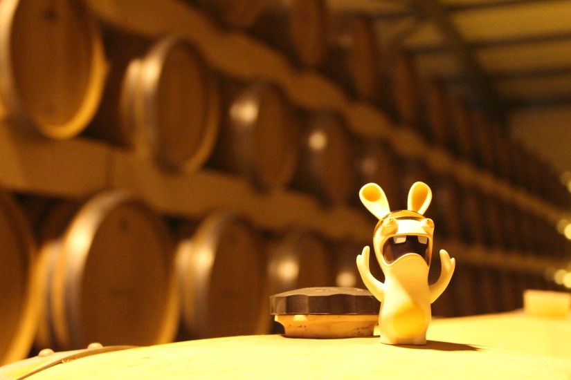 vignerons-tutiac-vin-cotes-blaye-rouge-rose-blanc-vigne-verre-degustation-oenotourisme-oenologie-decouverte-visite-chai-cuves-1-13