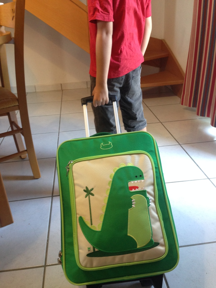 beatrix-france-valise-sac-bagage-lunch-box-valisette-boite-voyage-vacances-cartable-ecole-pique-nique-dino-dinosaure-poussin-fille-garçon-couleur-illustration-solide-pratique-11
