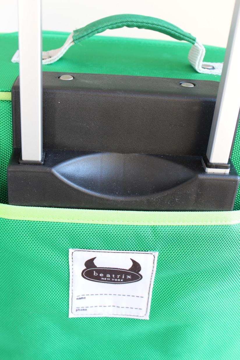 beatrix-france-valise-sac-bagage-lunch-box-valisette-boite-voyage-vacances-cartable-ecole-pique-nique-dino-dinosaure-poussin-fille-garçon-couleur-illustration-solide-pratique-4