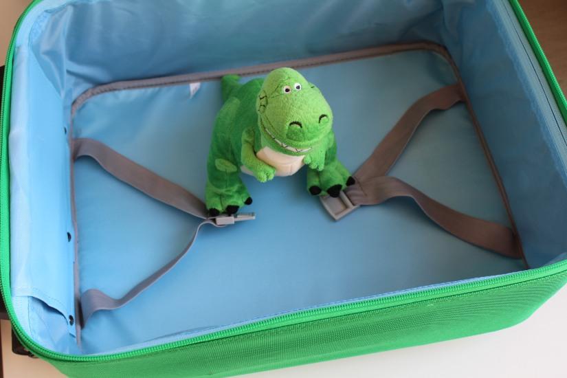 beatrix-france-valise-sac-bagage-lunch-box-valisette-boite-voyage-vacances-cartable-ecole-pique-nique-dino-dinosaure-poussin-fille-garçon-couleur-illustration-solide-pratique-6