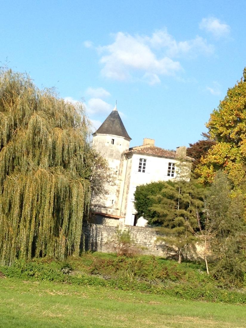 canalous-croisiere-fluviale-charentes-bateau-riviere-navigation-naviguer-famile-cognac-jarnac-saintes-gironde-vacances (23)