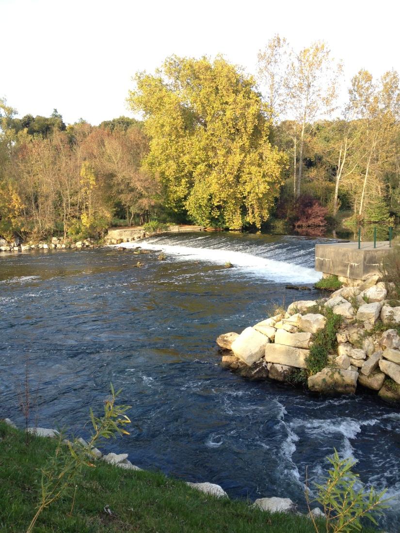 canalous-croisiere-fluviale-charentes-bateau-riviere-navigation-naviguer-famile-cognac-jarnac-saintes-gironde-vacances (31)