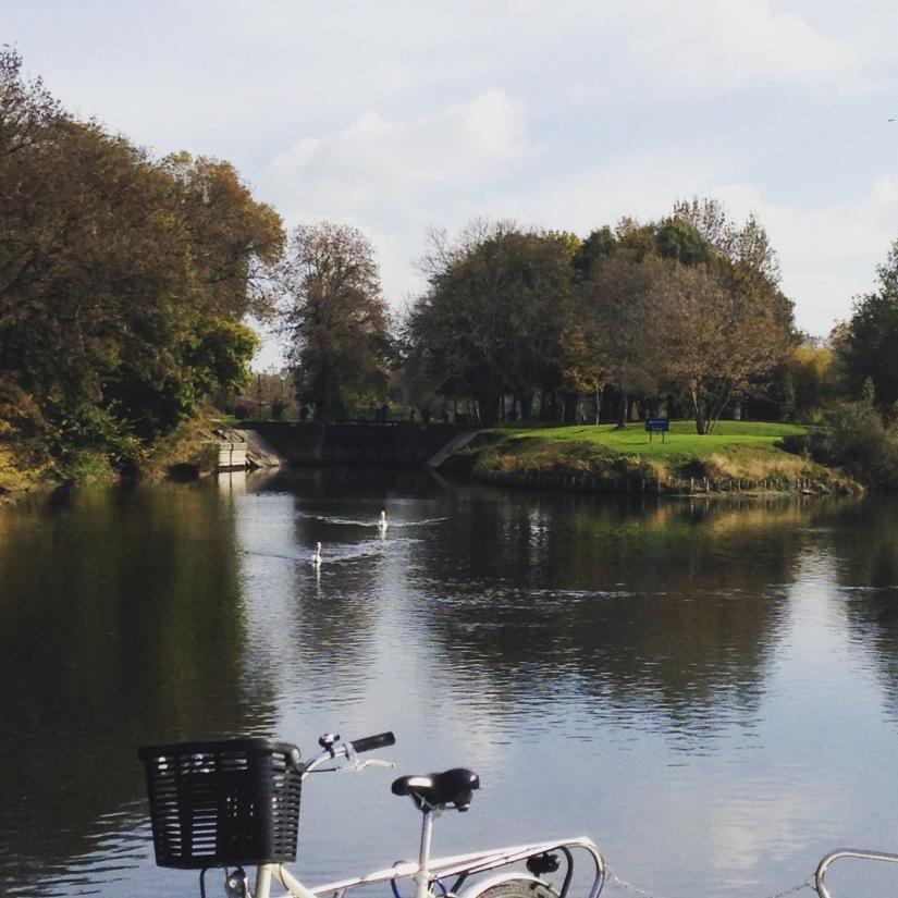canalous-croisiere-fluviale-charentes-bateau-riviere-navigation-naviguer-famile-cognac-jarnac-saintes-gironde-vacances (33)