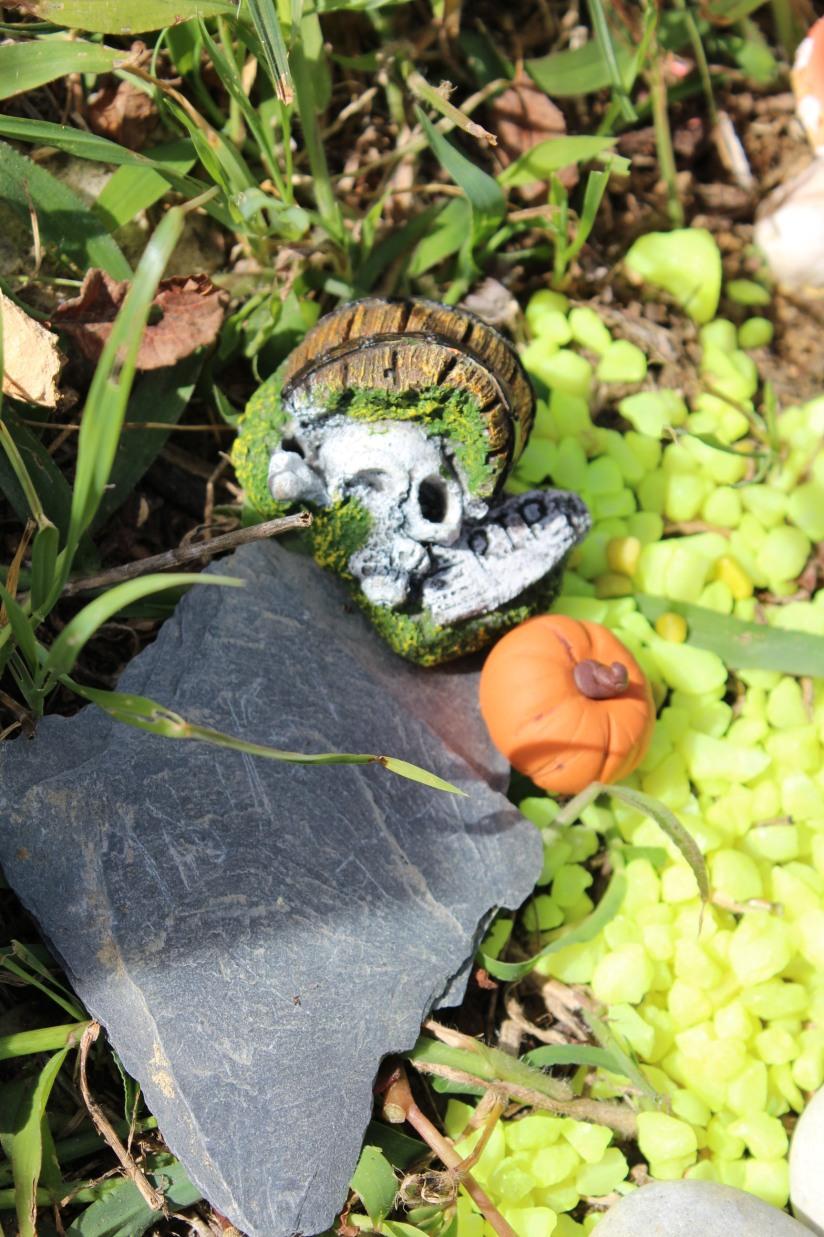 maison-fée-fee-fairy-garden-home-house-porte-jardin-deco-brico-tuto-diy-jeux-activité-enfant-imagination-truffaut-loisir-creatif-figurine-schleich-plante (52)