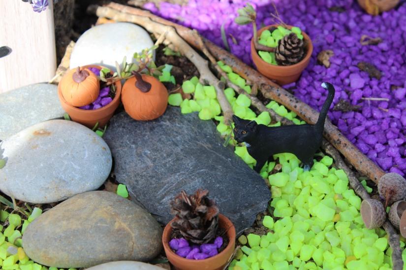 maison-fée-fee-fairy-garden-home-house-porte-jardin-deco-brico-tuto-diy-jeux-activité-enfant-imagination-truffaut-loisir-creatif-figurine-schleich-plante (57)