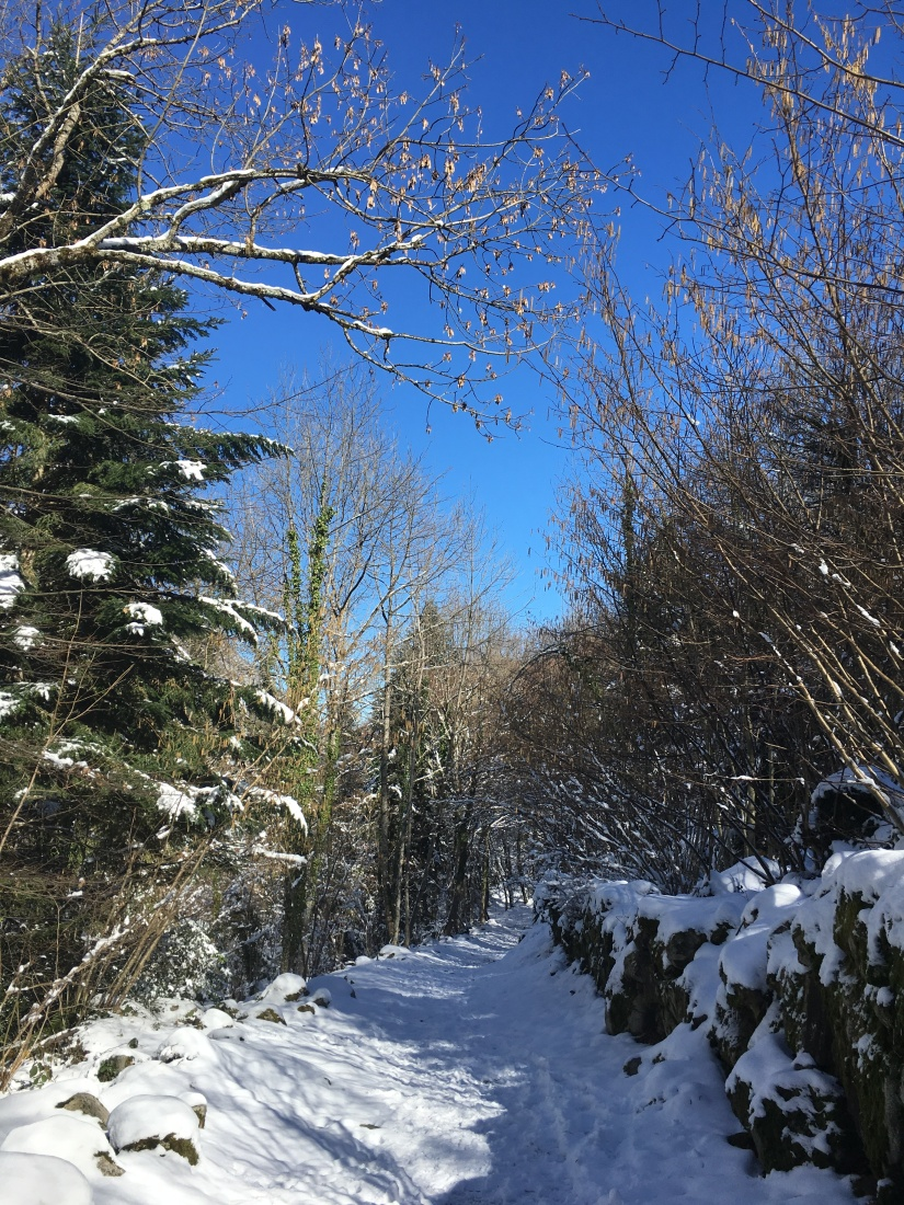 cauterets-pyrennees-ski-station-montagne-enfant-famille-week-end-sortie-loisirs-neige-decouverte-lieux-restaurants-balade-village-npy (14)