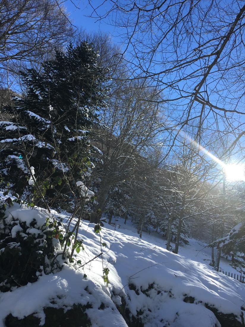 cauterets-pyrennees-ski-station-montagne-enfant-famille-week-end-sortie-loisirs-neige-decouverte-lieux-restaurants-balade-village-npy (15)