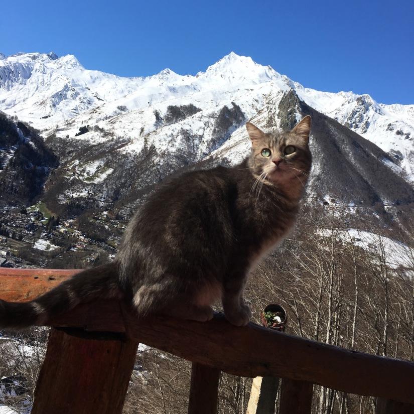 cauterets-pyrennees-ski-station-montagne-enfant-famille-week-end-sortie-loisirs-neige-decouverte-lieux-restaurants-balade-village-npy (30)