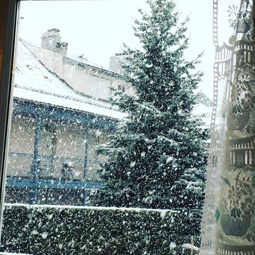 cauterets-pyrennees-ski-station-montagne-enfant-famille-week-end-sortie-loisirs-neige-decouverte-lieux-restaurants-balade-village-npy