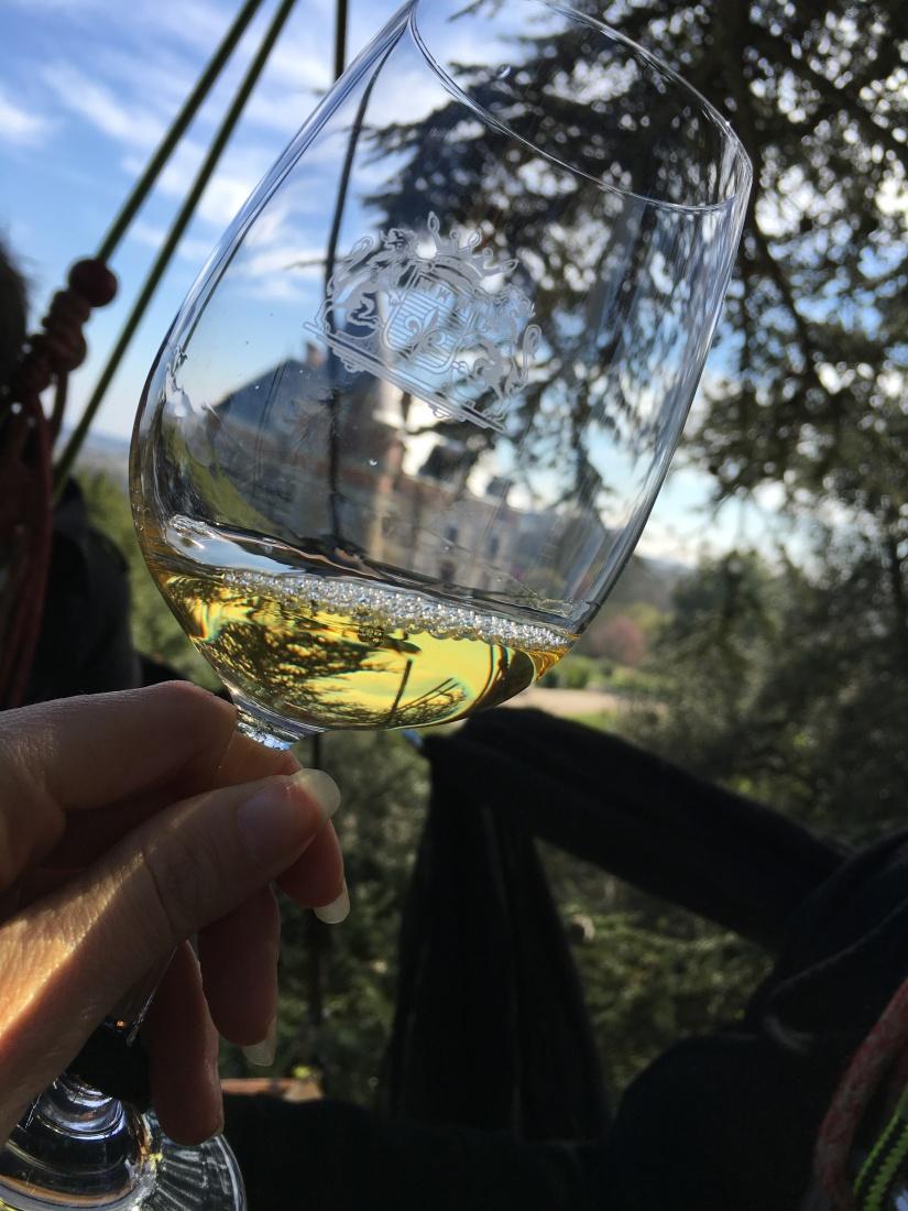 chateau-rayne-vigneau-degustation-arbre-perché-hauteur-vue-assemblage-vin-bordeaux-bommes-sauternes-grand-cru-classé-oenotourisme (11)