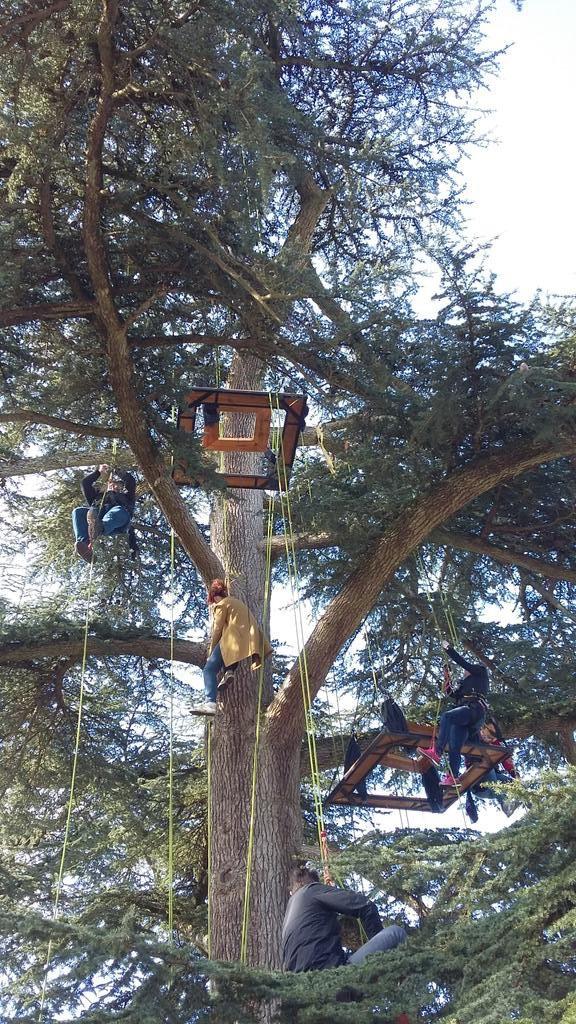 chateau-rayne-vigneau-degustation-arbre-perché-hauteur-vue-assemblage-vin-bordeaux-bommes-sauternes-grand-cru-classé-oenotourisme (18)