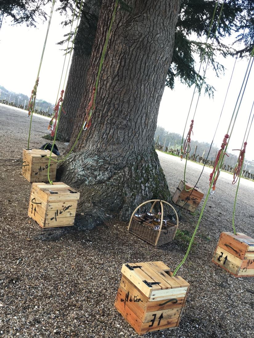 chateau-rayne-vigneau-degustation-arbre-perché-hauteur-vue-assemblage-vin-bordeaux-bommes-sauternes-grand-cru-classé-oenotourisme (2)