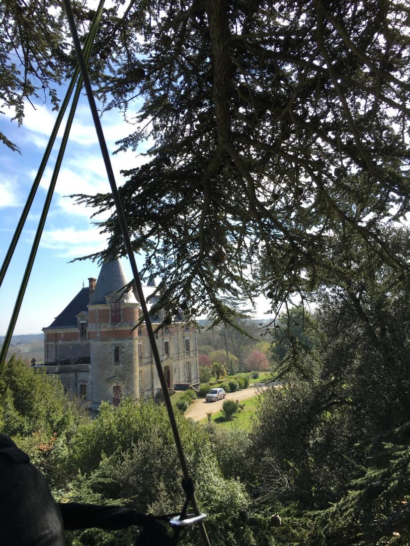 chateau-rayne-vigneau-degustation-arbre-perché-hauteur-vue-assemblage-vin-bordeaux-bommes-sauternes-grand-cru-classé-oenotourisme (5)