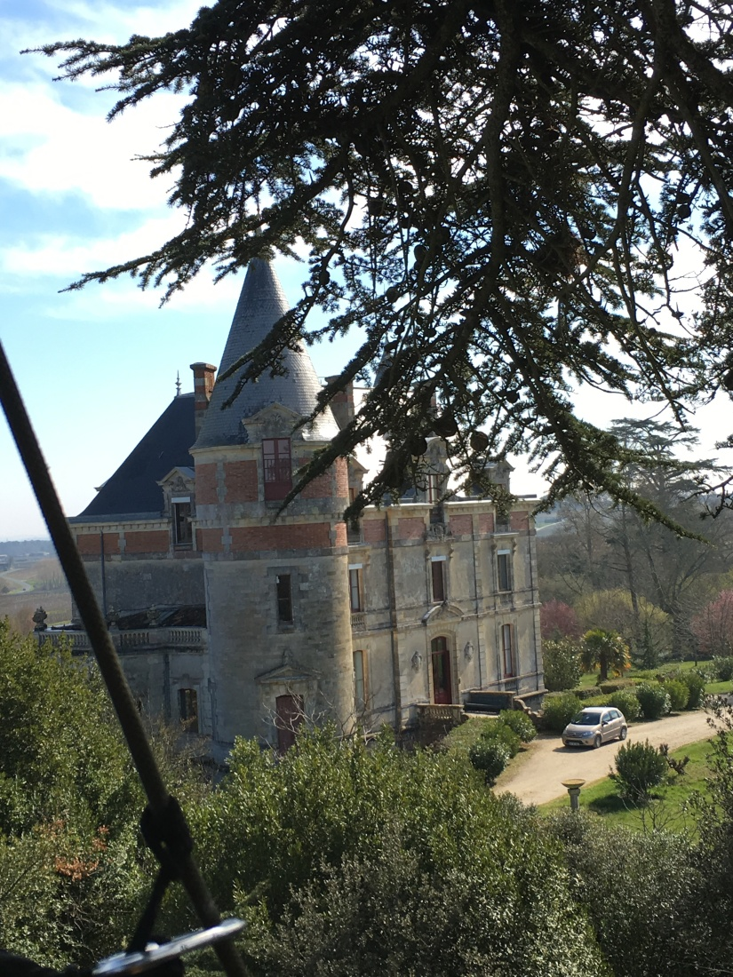 chateau-rayne-vigneau-degustation-arbre-perché-hauteur-vue-assemblage-vin-bordeaux-bommes-sauternes-grand-cru-classé-oenotourisme (9)