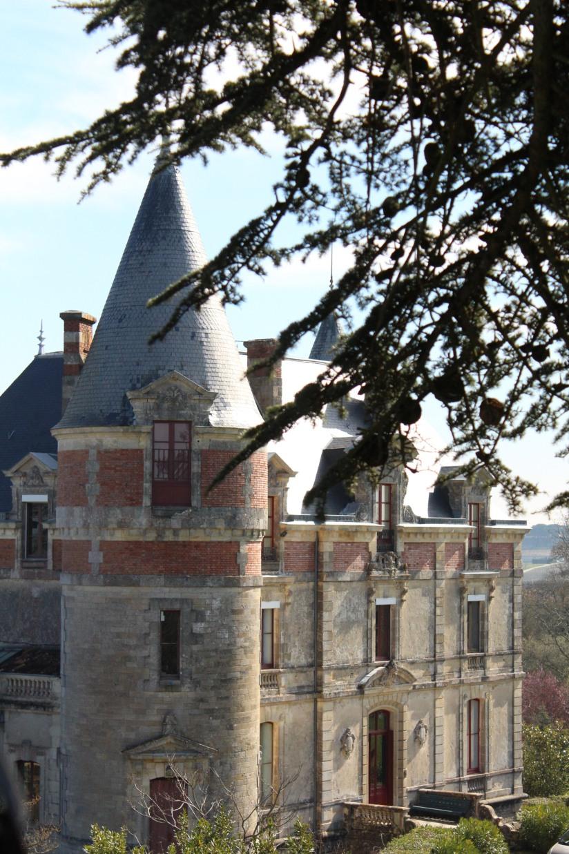 chateau-rayne-vigneau-sauternes-bommes-bordeaux-oenotourisme-vin-blanc-wine-decouverte-arbres-grimper-perché-degustation-ciron-assemblage-atelier-visite-chai (12)