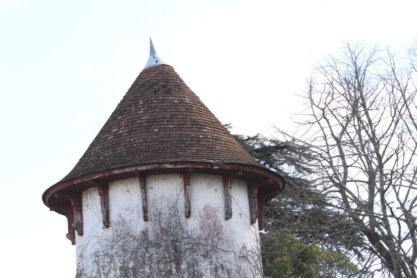 chateau-rayne-vigneau-sauternes-bommes-bordeaux-oenotourisme-vin-blanc-wine-decouverte-arbres-grimper-perché-degustation-ciron-assemblage-atelier-visite-chai (3)