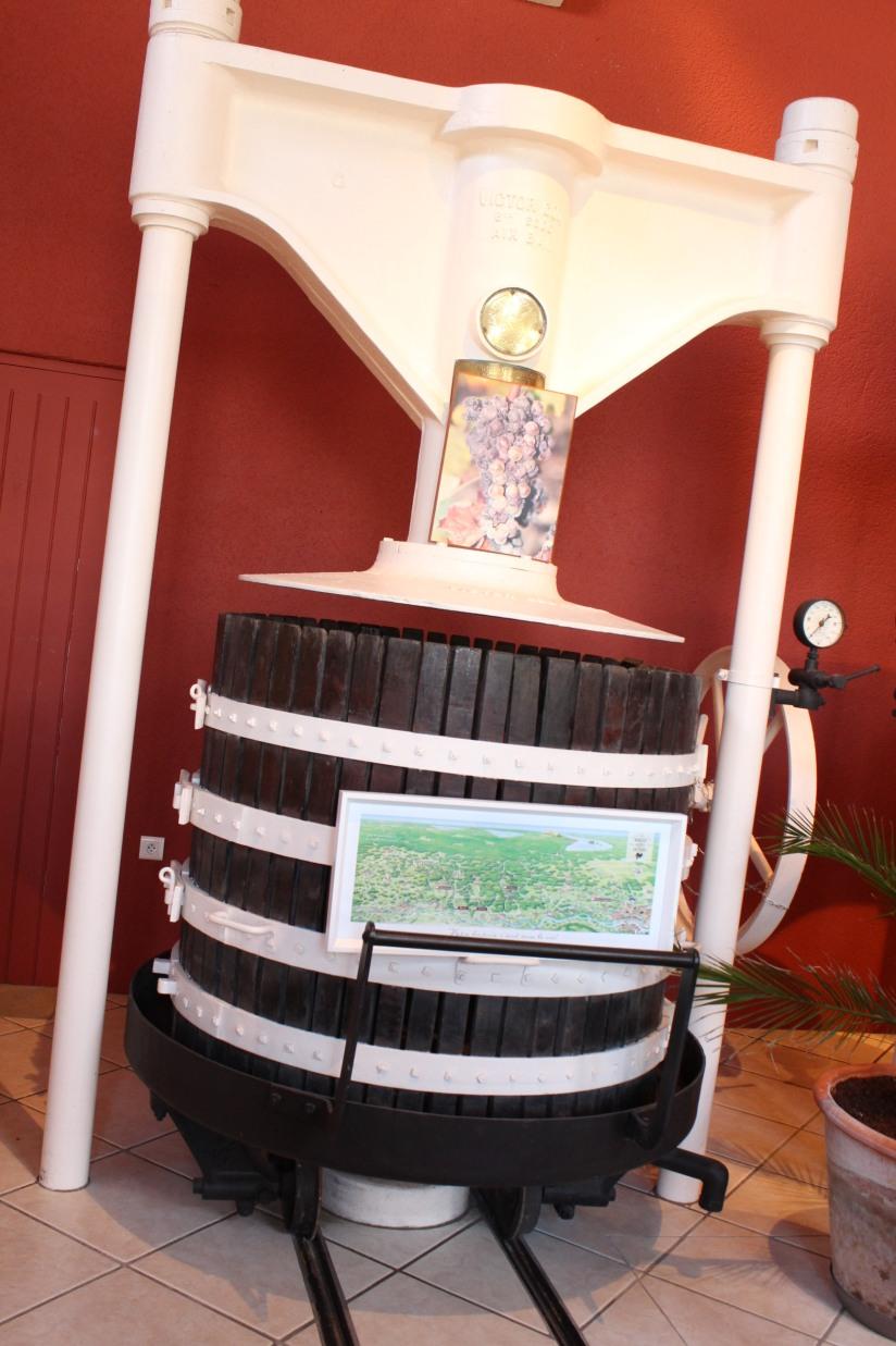 chateau-rayne-vigneau-sauternes-bommes-bordeaux-oenotourisme-vin-blanc-wine-decouverte-arbres-grimper-perché-degustation-ciron-assemblage-atelier-visite-chai