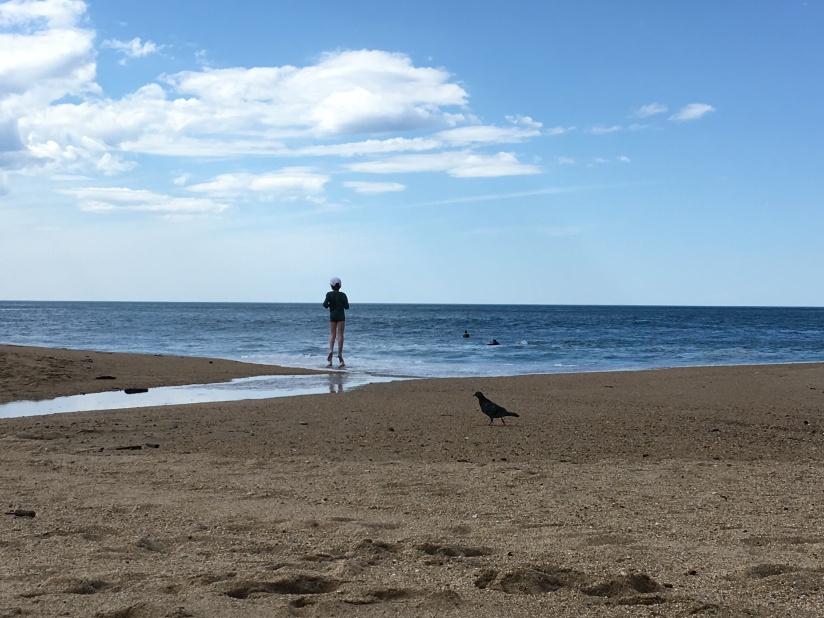 biarritz-pays-basque-euskadi-balade-decouverte-week-end-escapade-famille-sud-ouest-gironde (20)