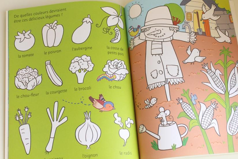lecture-livre-lire-jardin-comment-pousser-fleurs-fruits-nature-decouverte-enfant-junior-cycle-plante-nathan-usborne (2)