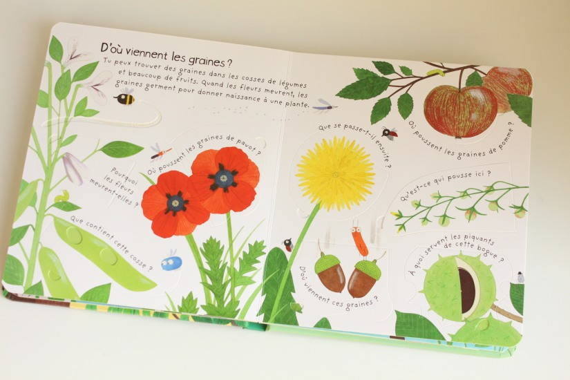 lecture-livre-lire-jardin-comment-pousser-fleurs-fruits-nature-decouverte-enfant-junior-cycle-plante-nathan-usborne (3)