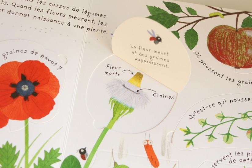 lecture-livre-lire-jardin-comment-pousser-fleurs-fruits-nature-decouverte-enfant-junior-cycle-plante-nathan-usborne (4)